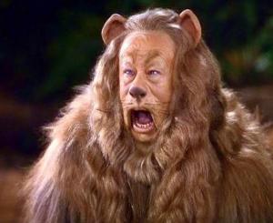 leone mago di oz